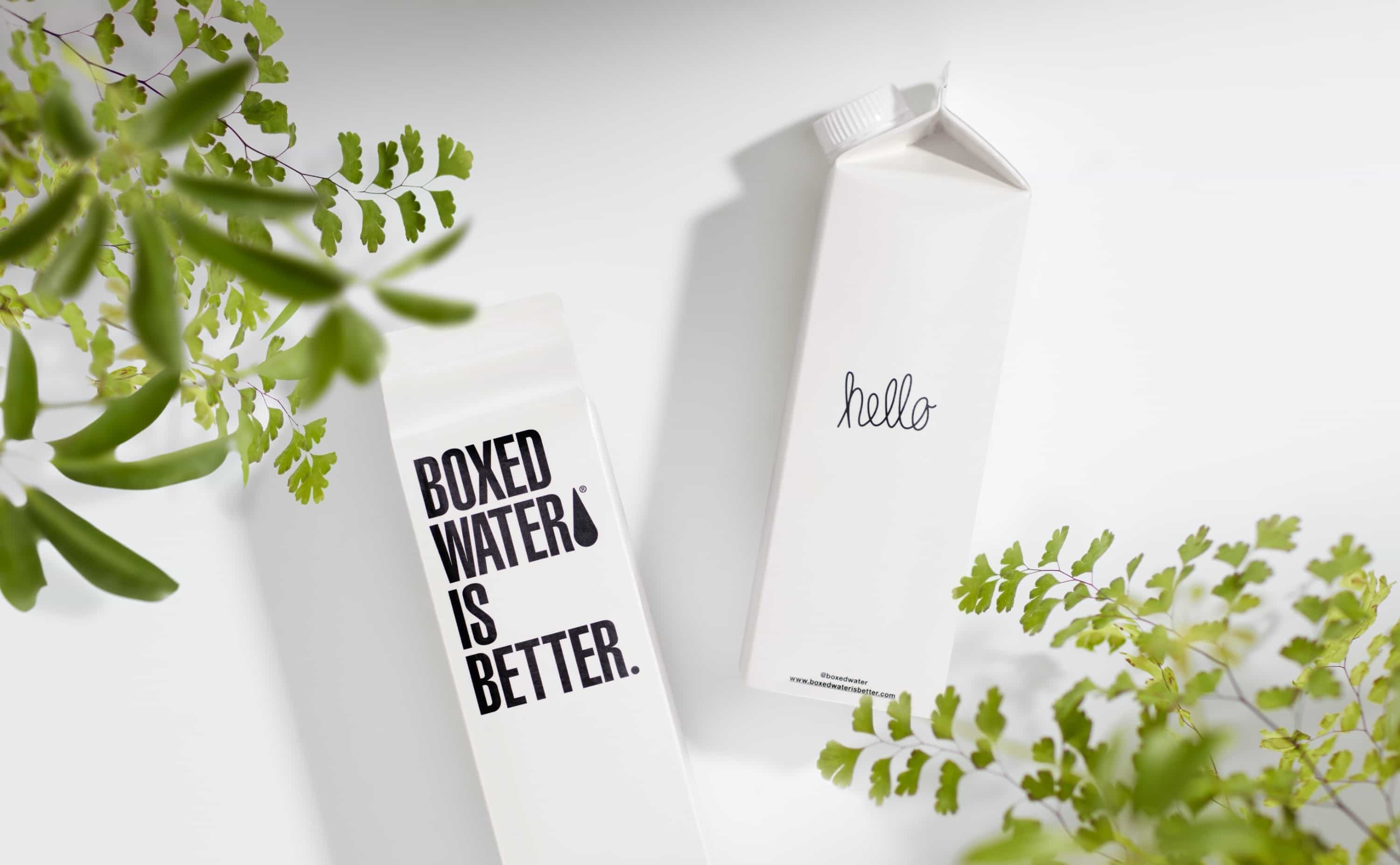"""Boxed Water Is Better"" has an inviting brand identity. It's clean, like drinking water."